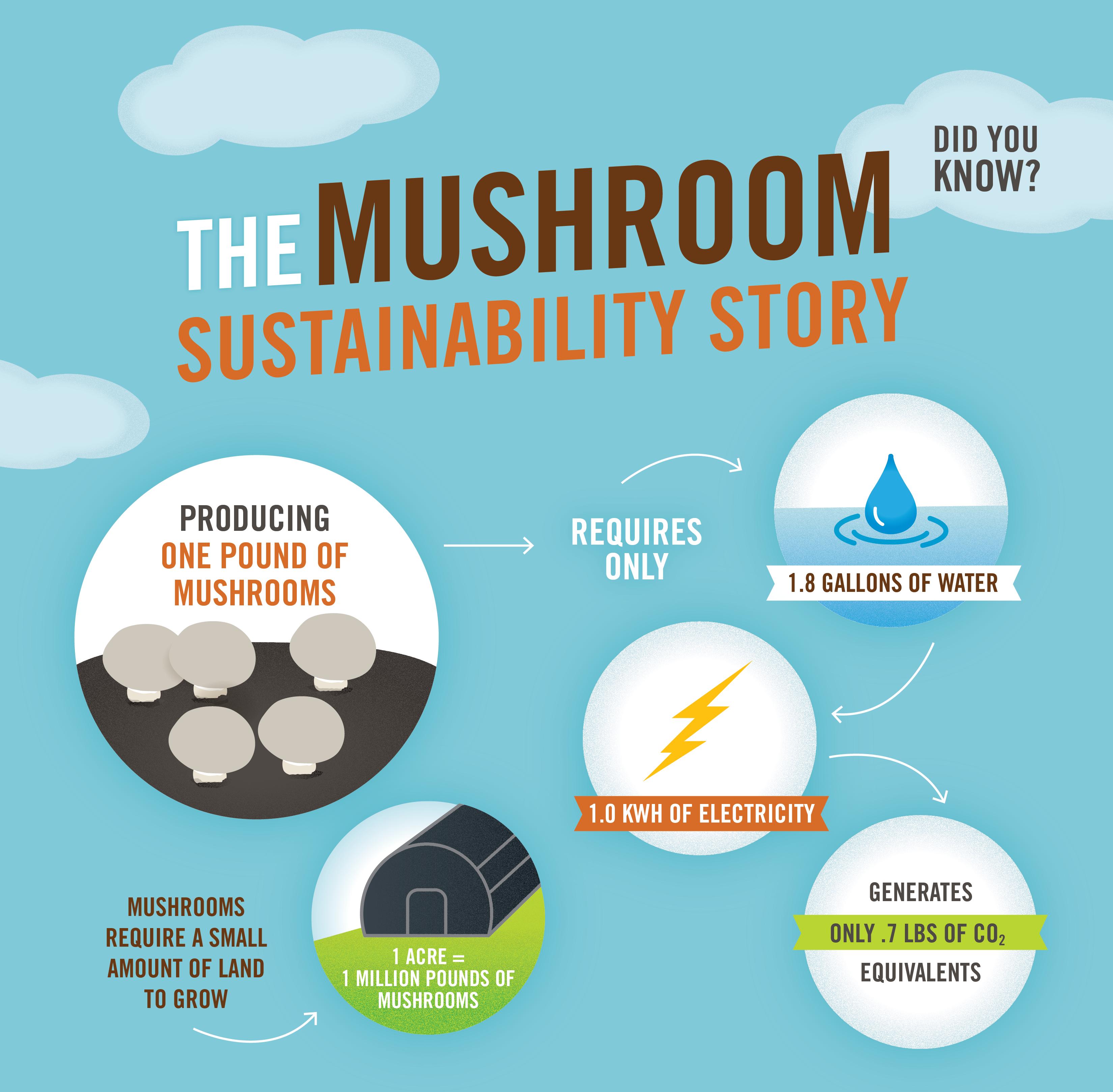 Mushroom Sustainability Story 11x17-01.png