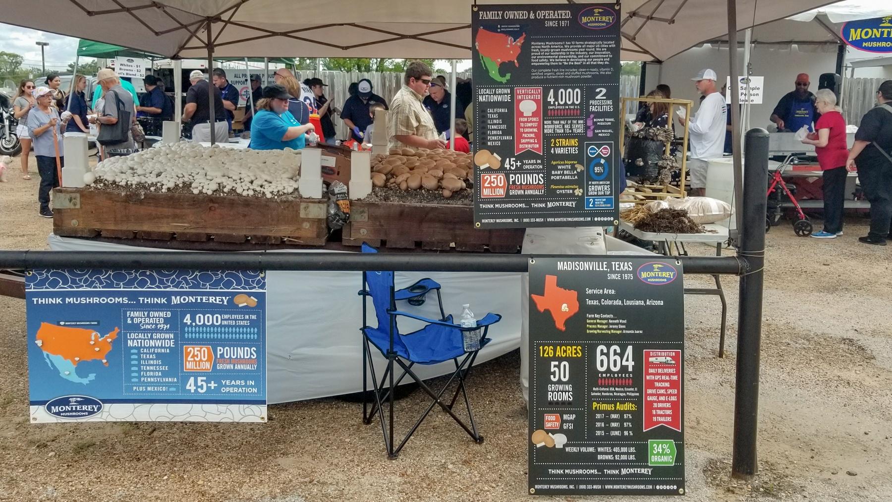 mushroom-festival-1