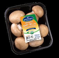 mushroom-pack03