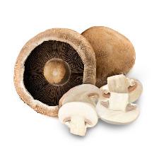 Vitamin-D-Mushrooms_adobespark