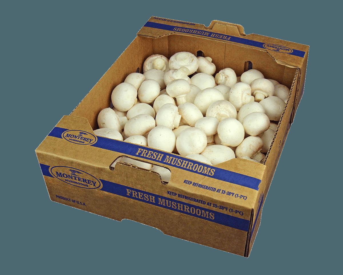 white-organic-mushrooms